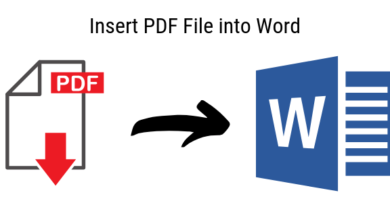 Photo of Best Ways to Add Pdf into Word