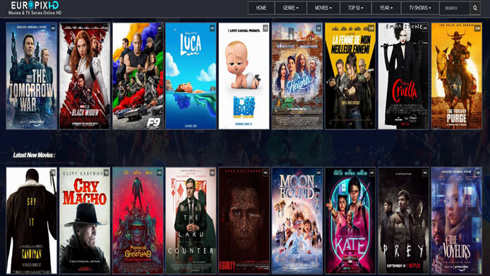 Watch Free Tv Series and Movies online